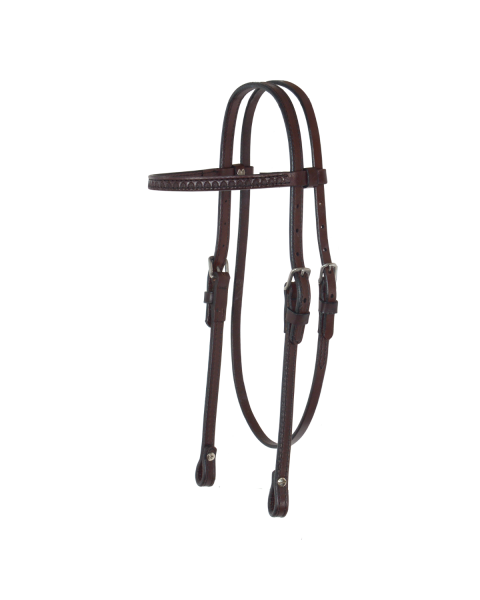 Shell Browband Headstall-3099